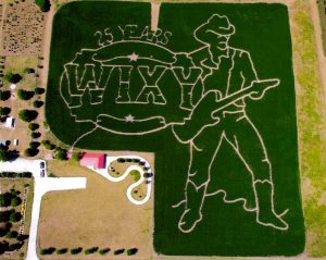 WIXY Corn Maze at Hardee's Reindeer Ranch