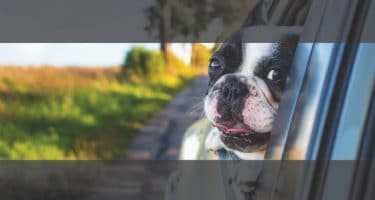 how to crop for website banner photos