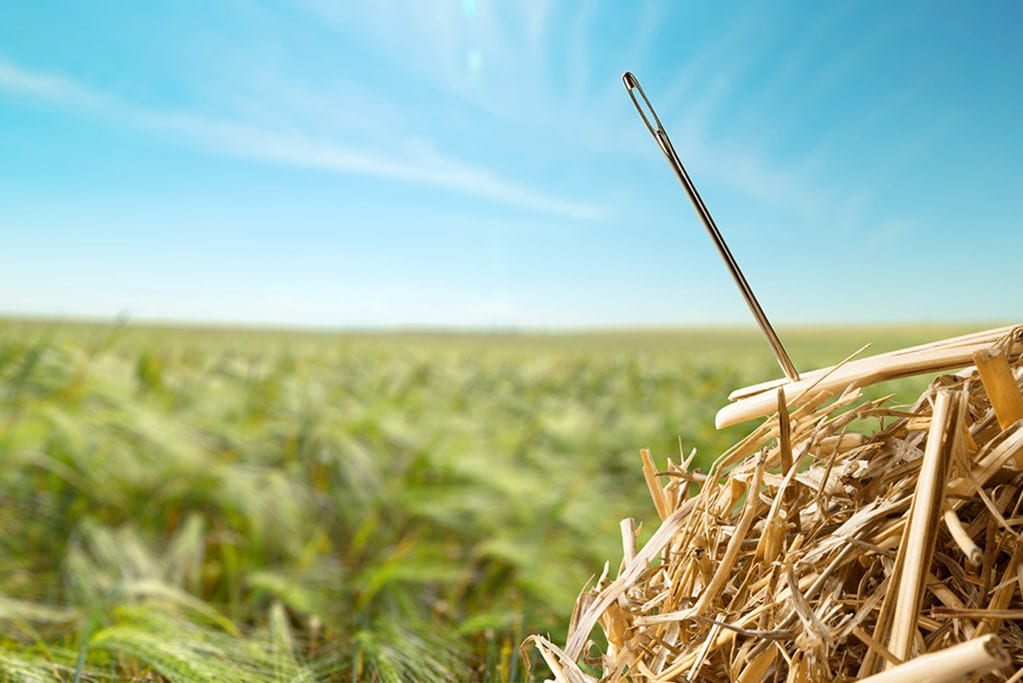 SEO can be like finding a needle in a haystack