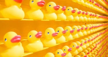 shelves full of rubber ducks